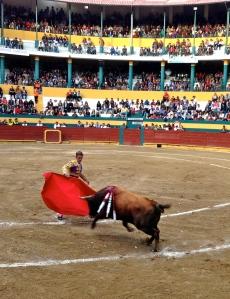 Guillermo Alban begins the faena in Riobamba.